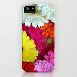 Gerbers in color iPhone Case