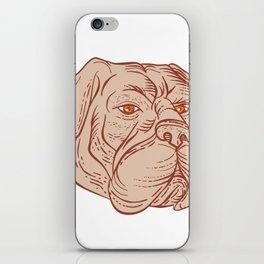 Bullmastiff Head Etching Color iPhone Skin