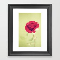 Perfect Rose Framed Art Print