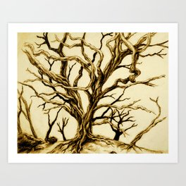 Tree with long twisted bare branches without leaves Hawaii Art Print