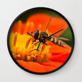 Native Pollinators 1 Wall Clock