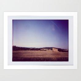 Fields of Summer Art Print