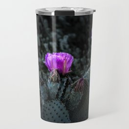 Cactus Blooming in the Anza-Borrego Desert State Park, Southern California Travel Mug