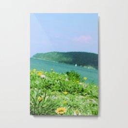 Summer Daydream Metal Print