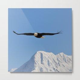 Bird's Eye View! Metal Print