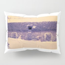 acid winter Pillow Sham