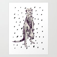 Meerkat in the Rain Art Print