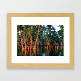 Cypress Grove Framed Art Print