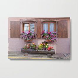 Two Windows and Colorful Flowers Metal Print
