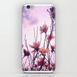 Alexandrina Saucer Magnolia Tree iPhone Skin