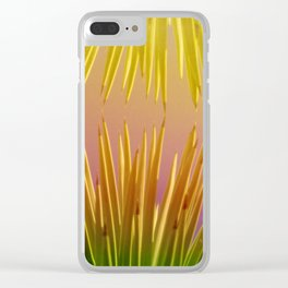Rainbows in the Desert Clear iPhone Case