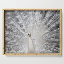 White Peacock folding fan Serving Tray