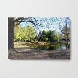 Muscogee (Creek) Nation - HonorHeights Park Azalea Festival, Duck Pond Metal Print