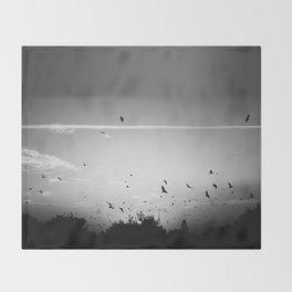Migrating birds #02 Throw Blanket