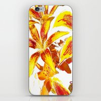 lily iPhone & iPod Skins featuring Lily by ANoelleJay