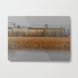 Rusty Reeds Metal Print