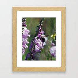 Random bee in my picture Framed Art Print
