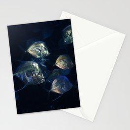 Marine Vision Stationery Cards