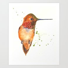 hummingbird, exotic birds, bird art Art Print