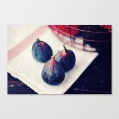 Three Figs Canvas Print