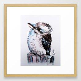 Little Kookaburra Framed Art Print