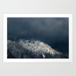Darkness and sun over snowy spruce forest Art Print
