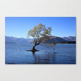 Lake Wanaka Tree Canvas Print