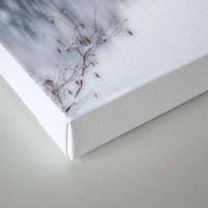 White Wonder Reflection Canvas Print