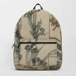 Patterns In Nature Backpack