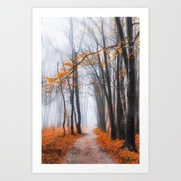 Misty road Art Print