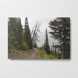 Foggy Hiking Metal Print