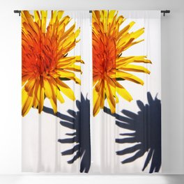 Dandelion and Shadow Blackout Curtain