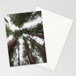Redwood Portal - nature photography Stationery Cards
