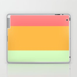 Melon Trio #2 Laptop & iPad Skin