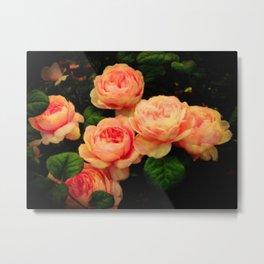 Old Country Roses Metal Print