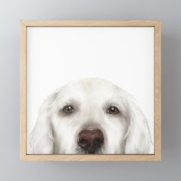Golden Retriever WhiteDog illustration original painting print Framed Mini Art Print