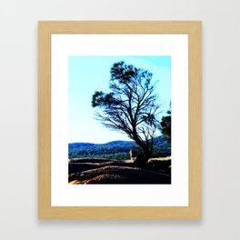 Honeymoon Tree Framed Art Print