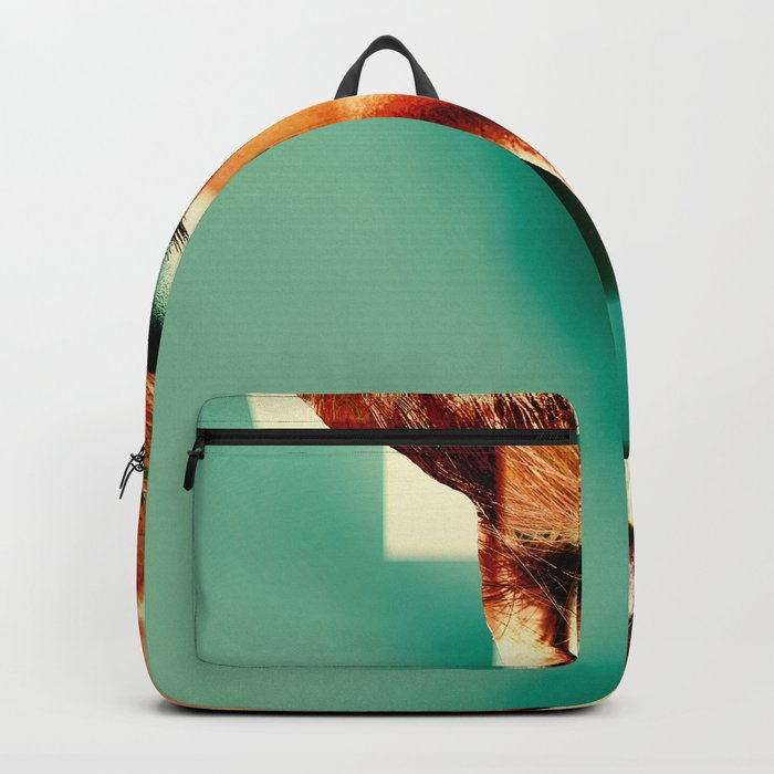 LOOK Backpack