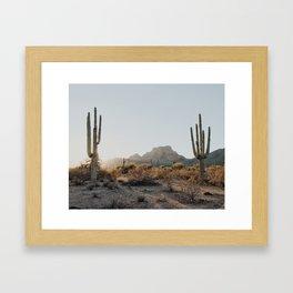 Two Saguaros Framed Art Print