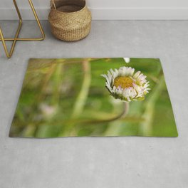 The beauty in common things Rug