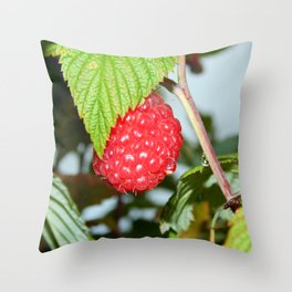 Single Red Raspberry After the Rain Throw Pillow
