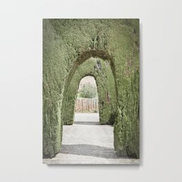 Tree Arches in Granada Metal Print