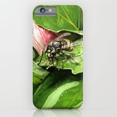 Wasp on flower16 Slim Case iPhone 6s