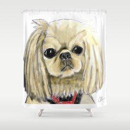 Cartoon dogs Li Li the Pekingese Shower Curtain