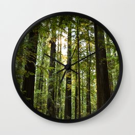 Humboltd Redwoods State Park Wall Clock