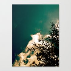 Tree in the Sky Canvas Print