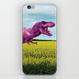 Pink in the fields iPhone Skin