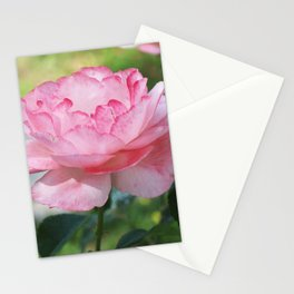 Pale Pink Rose Stationery Cards