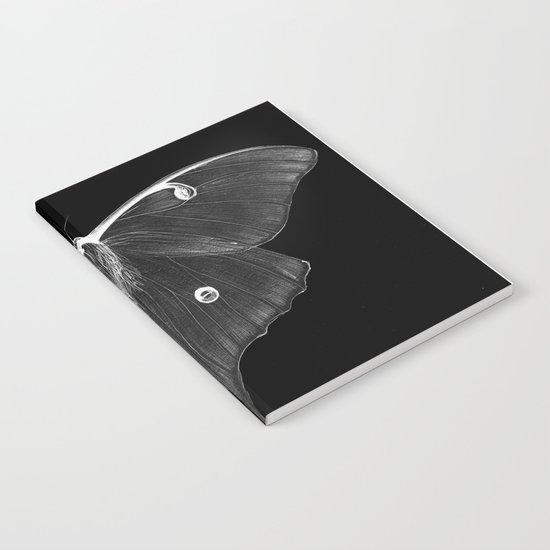 Luminescence Notebook