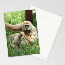 Gibbon 2 Stationery Cards